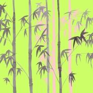 big bamboo blog