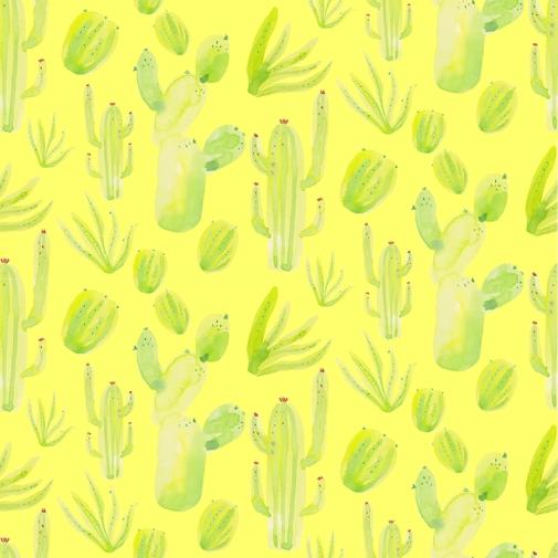 cacti-in-rpt-blog