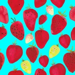 strawberries-blog