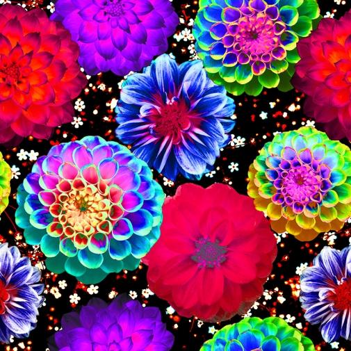 bright blooms blog