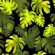 jungle leaves blog