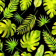 Tropical Greenery blog