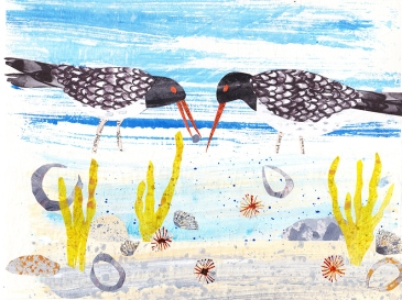Oystercatchers on the shore