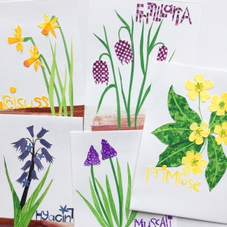 selection of spring flowers